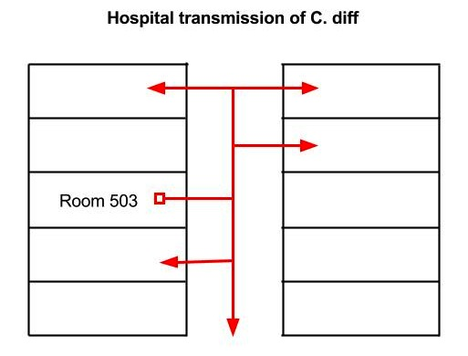 C. diff hospitals - how C diff spreads in hospitals